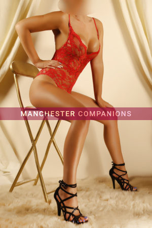 Lauren Cheshire Companions